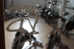 spinning-gut
